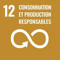 12 Consommation et production responsables